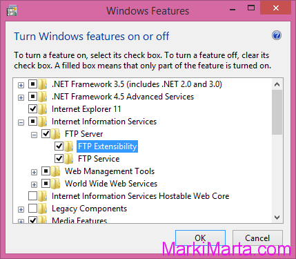 Figure 2. Add FTP Extension for IIS