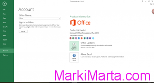 Figure 1. MS Office account section